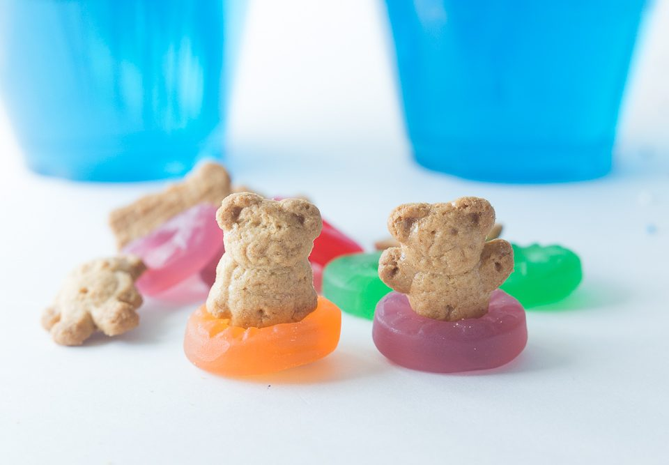 Teddy Bear Jello Pool